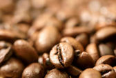 Close up photo of coffee beans — Stock Photo