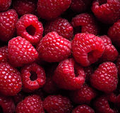 Raspberry fruit background — Foto Stock