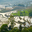 Rice terraces. Yunnan, China. — Stock Photo #25335575