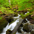 Mountain River in the wood — Stock Photo #26417925
