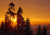 Beautiful sunrise in the winter mountains — Stock Photo