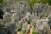Stone forest Shi Lin — Stock Photo