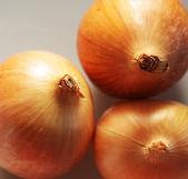 Üç soğan — Stok fotoğraf