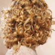 Beautiful female curly blond hairs - back view — Stock Photo #27715259
