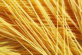 Raw pasta as whole background — Stock Photo