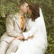 Wedding couple outdoor — Stock Photo #29908691