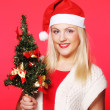 Woman with Santa hat holding christmass tree — Stock Photo