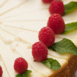 Sour cream cheesecake with raspberries. — Foto Stock