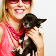 Portrait of young glamorous woman with toy-terrier — Stock Photo