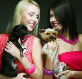 Two glamor girls with puppys — Stock Photo