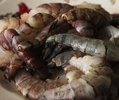 Surowe krewetki — Zdjęcie stockowe