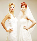 Two young brides — Stock Photo