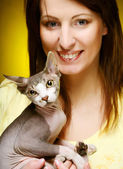 Young woman with fun sphynx  cat — Stock Photo