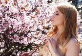 Woman smelling flowers in blooming sakura garden — Stock Photo