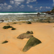Stones on exotic, tropical, sandy beach — 图库照片