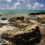 stenen op exotische, tropische, zandstrand — Stockfoto