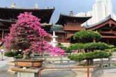 Chi Lin Buddhist Temple, Hong Kong. — Stock Photo