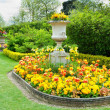 Flower Garden Background — Stockfoto