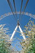 LONDON, ENGLAND - MAI 2: London Eye on May 21th 2013 in London. The 135 meter landmark is a giant. — Stock Photo