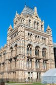 NATURAL HISTORY MUSEUM OF LONDON — 图库照片