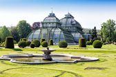Botanical garden near Schonbrunn palace in Vienna — Stock Photo