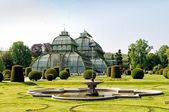 The Palm House in Schonbrunn Palace, Vienna — Stock Photo