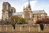 Catedral de notre-dame de parís — Foto de Stock