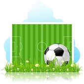 Pallone da calcio su erba verde — Vettoriale Stock