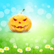 Halloween Background with Pumpkin — Stock Vector #30947537
