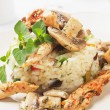 Risotto with mushrooms and chicken meat — Stock Photo #14308835