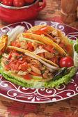 Taco skal — Stockfoto