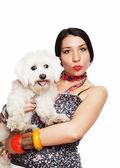 Girl with maltese dog — Stok fotoğraf