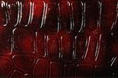 高級レザー折財布 — ストック写真