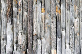 Grey Wooden fence  — Stockfoto
