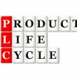 Product Life Cycle — Stock Photo #48155535