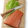 Salmon — Stock Photo #18986075