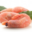 Small shrimps — Stock Photo #31043475