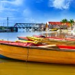Stock Photo: Jamaica. National boats on Black river.