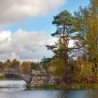 Russia. Saint-Petersburg. Gatchina. Autumn in palace park — Stock Photo