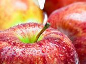 Juicy apples in drop of water — Stock Photo
