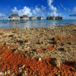 The coral coast and lodges over the ocean. — Stock Photo