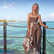 The young beautiful woman on a wooden platform over the sea — Stock Photo #13653536