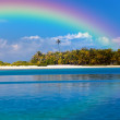 The tropical island with palm trees in the ocean and a rainbow over it — Stock Photo