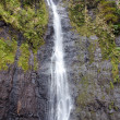 Stock Photo: Waterfall. Polynesia. Tahiti