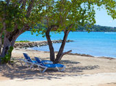 Empty beach chairs in a shadow of trees at the sea. Jamaica — Stock Photo