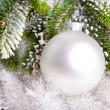 White nacreous glass New Year's ball and snow-covered branches of a Christmas tree - Stock Photo