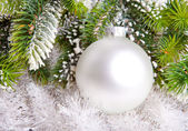 White nacreous glass New Year's ball and snow-covered branches of a Christmas tree — Stockfoto