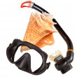 Big sea shell and equipment for diving (snorkel) — Stock Photo