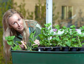 The young woman transplants seedling — Stock Photo