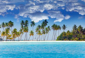 The island with palm trees in the ocean — Stock Photo